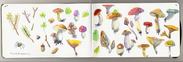 moleskine-mushrooms